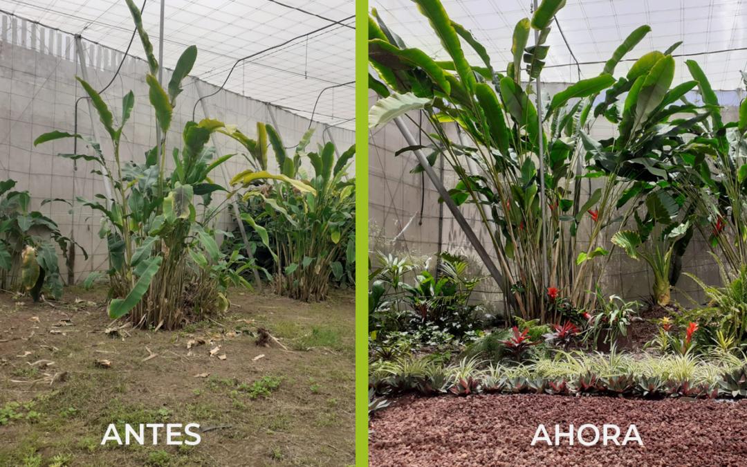 """¡Un cambio de imagen! los alumnos y alumnas del curso """"Instalación y mantenimiento de jardines y zonas verdes"""" ponen en práctica lo aprendido"""